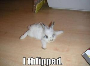 little-rabbit-slipped